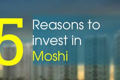 Invest in moshi