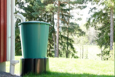 Why Rainwater Harvesting is Crucial to Solving India's Water Woes