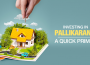 Investing in Pallikaranai: A Quick Primer